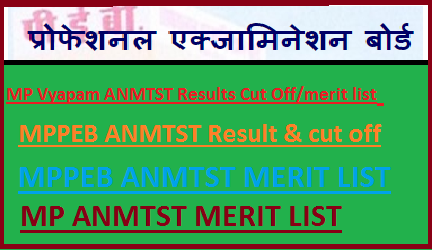MP Vyapam ANMTST RESULT 2019