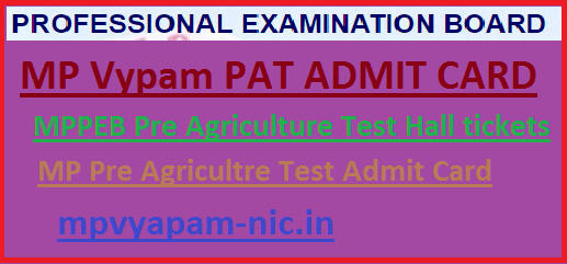 MP Vyapam PAT Admit Card 2019
